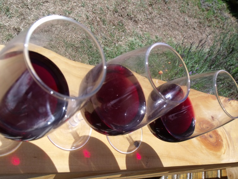 Blind tasting of Chinon wines