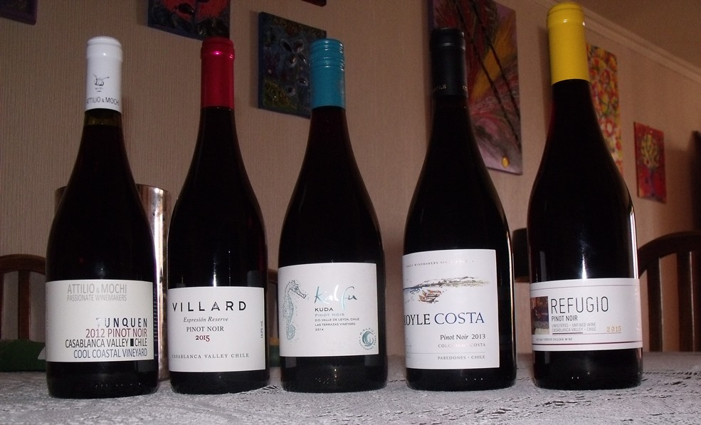 Line up of Chilean Pinot Noir bottles