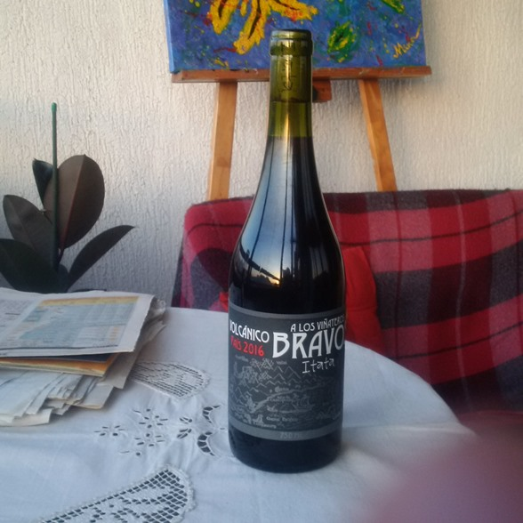 A los Viñateros Bravos País wine