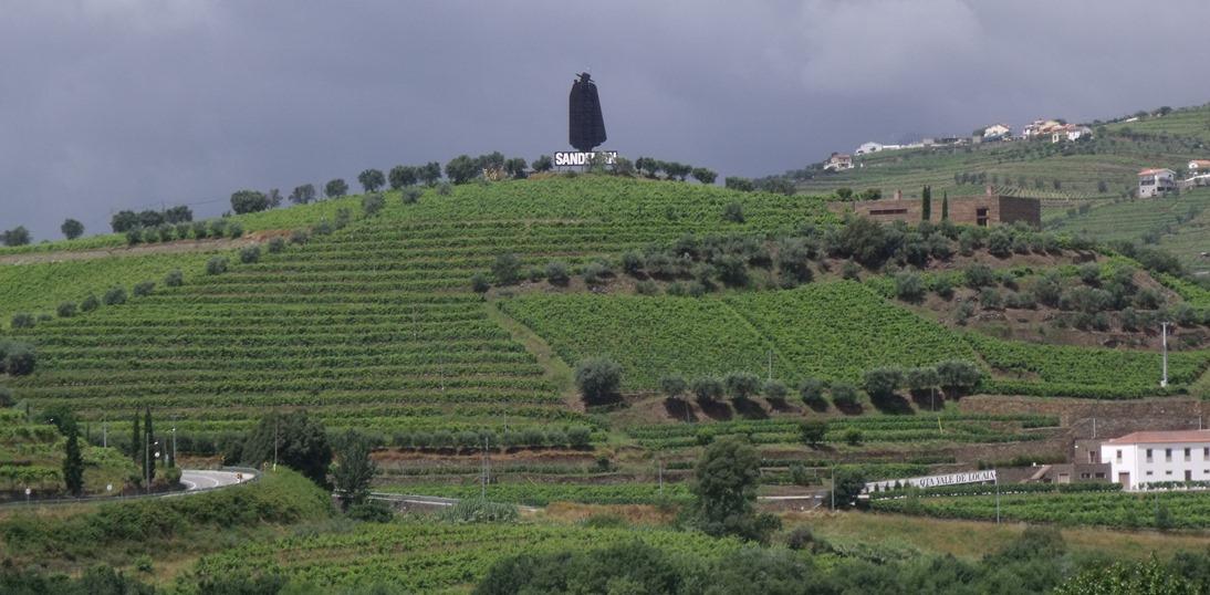 Landscape in the Baixo Corgo, the westernmost area of the Douro