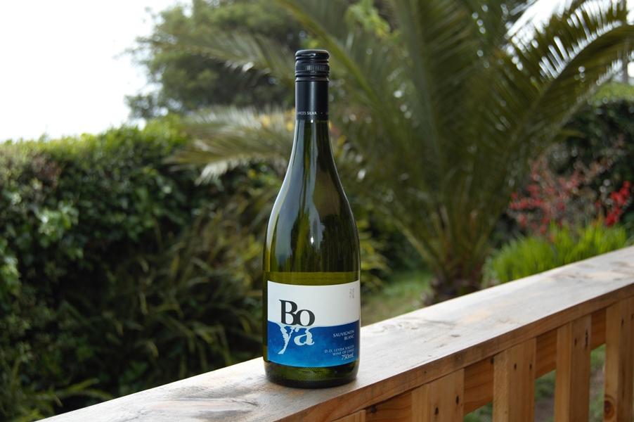 Boya Chilean Sauvignon Blanc wine