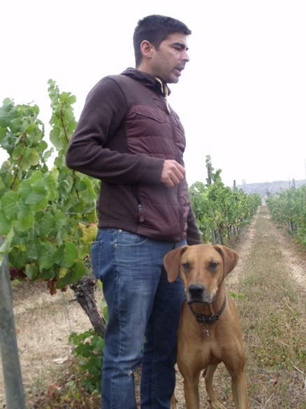 Felipe Marín and his grape-loving dog