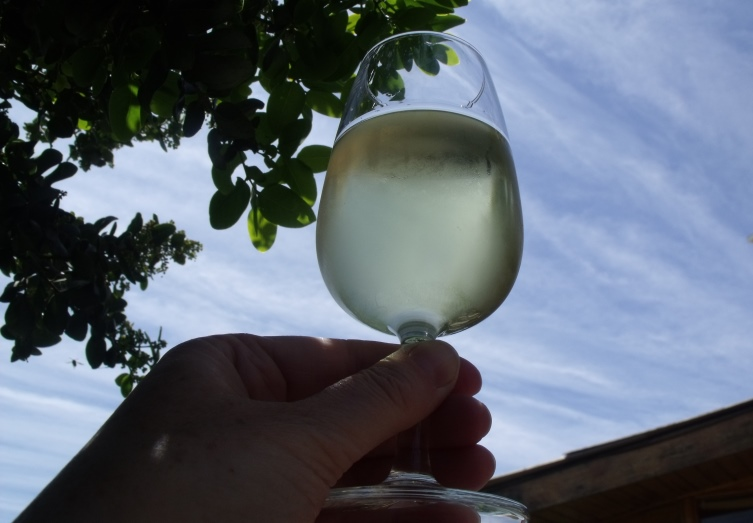 Glass of Chilean Sauvignon Blanc wine