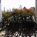 Bikes available at Casas del Bosque