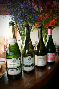 bottle lineup