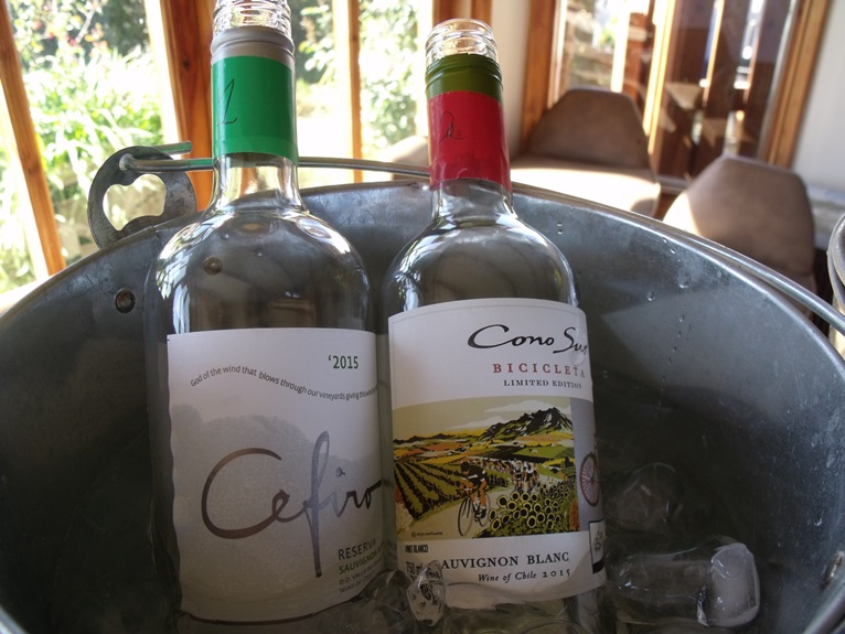 Sauvignon Blanc wines in first flight: Cefiro and Cono Sur