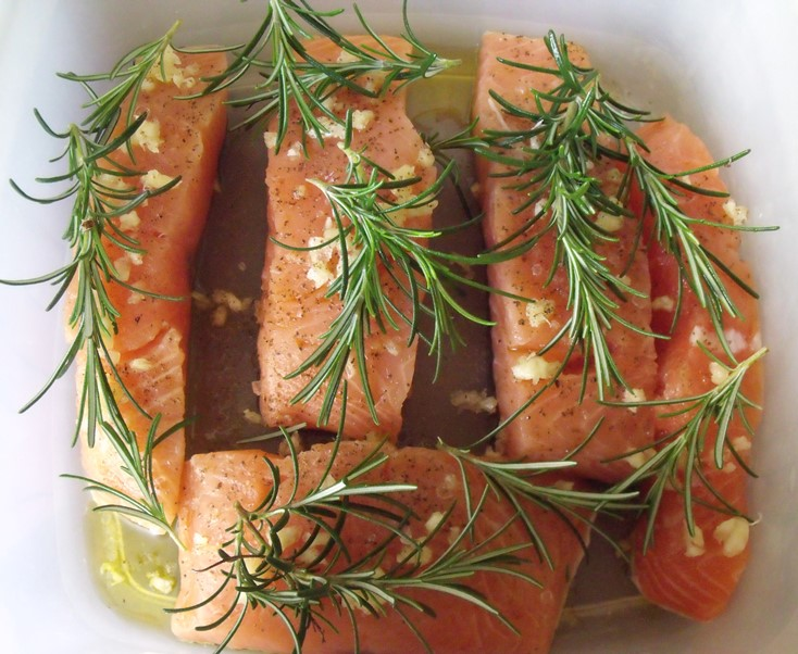 Salmon fillets in marinade
