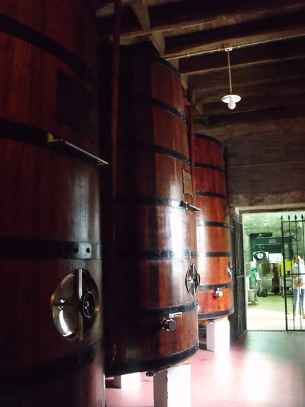 Wooden casks of Port at Quinta do Panascal