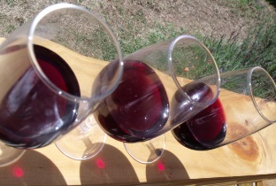 Tasting French wine – Loire Cabernet Franc