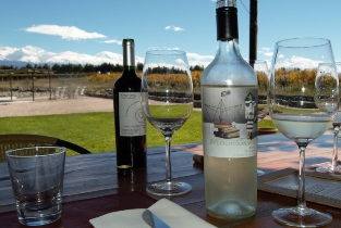The lowdown on the Mendoza wine region