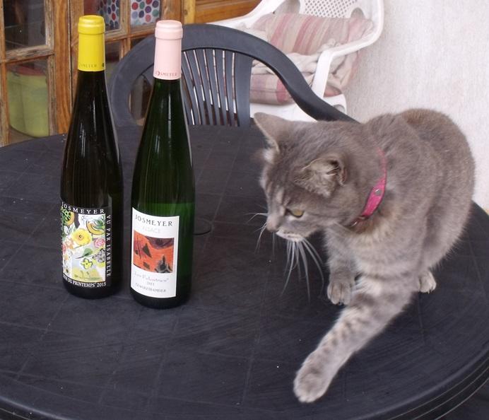 Bottles of Alsace wine