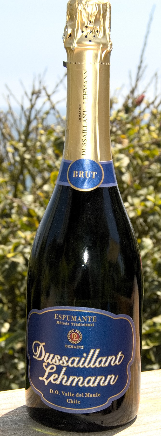 Sparkling wines for the festive season