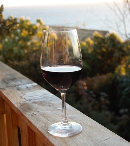 Glass of Malbec wine
