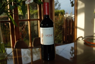 Weekend wine: Morandé Vigno 2012
