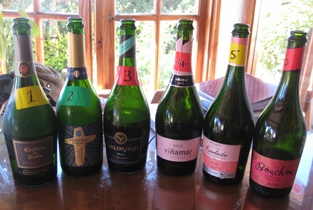 Budget Chilean Sparkling Wine Tasting Results