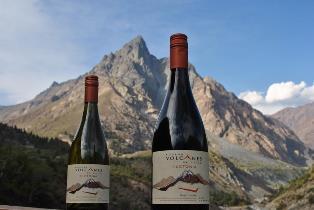 Talking volcanic wine with Ben Gordon