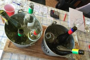 Chilean Sauvignon Blanc Tasting Results