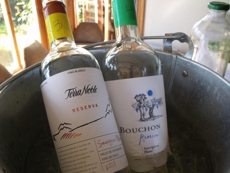 Sauvignon Blanc chileno